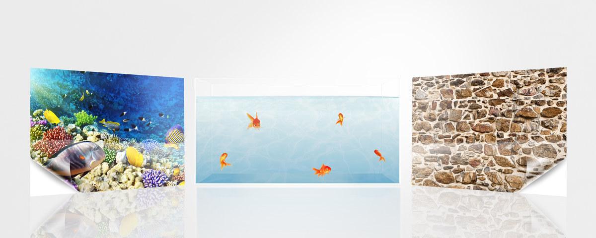 Aquarium r ckwandfolie mit ihrem motiv bei myposter for Klebefolie bedrucken