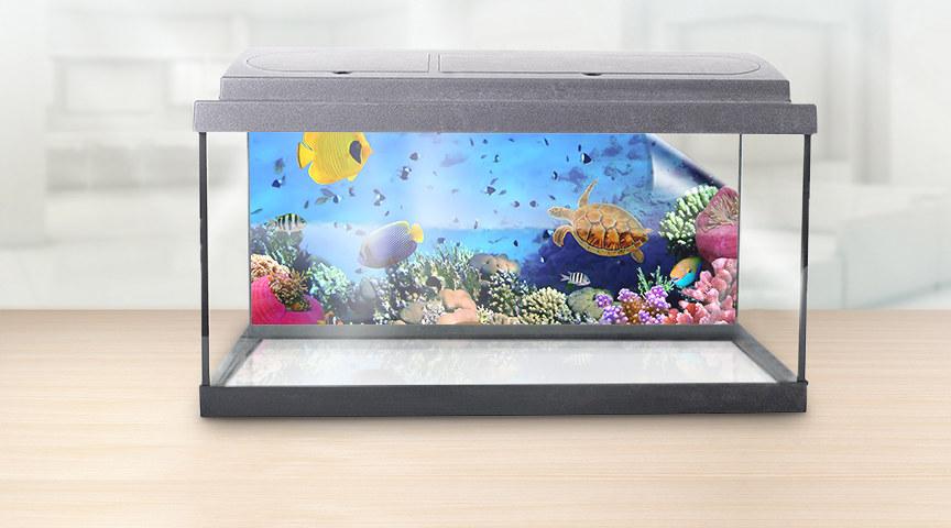 aquarium r ckwandfolie mit ihrem motiv bei myposter. Black Bedroom Furniture Sets. Home Design Ideas