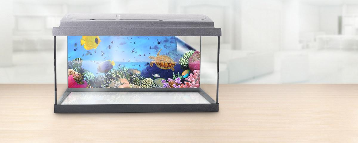 Aquarium Rueckwand