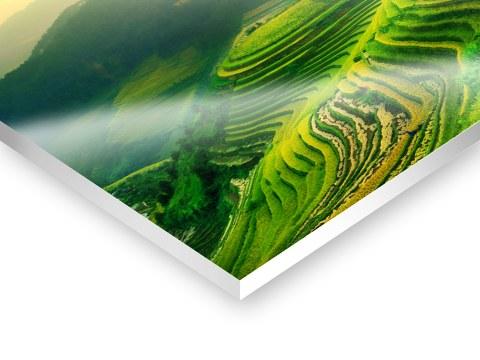 Foto forex platte