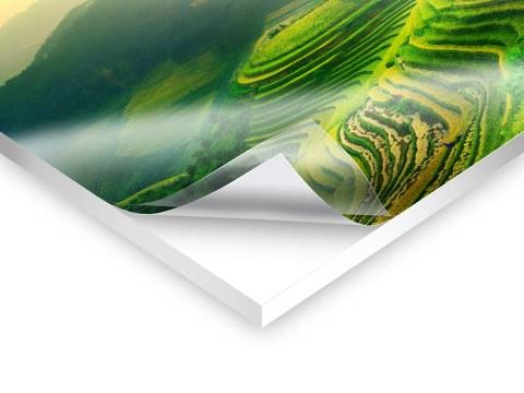 Was ist Forex, das ideale Plattenmaterial?