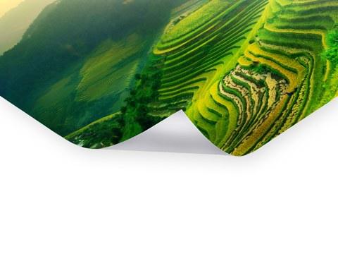 Hochwertige Premium Poster Als Bilder Für Die Wohnung. Drucken Sie Für Ihre Wohnung  Bilder Als Poster Mit Oder Ohne Rahmen, Matt Oder Glänzend Laminiert ...