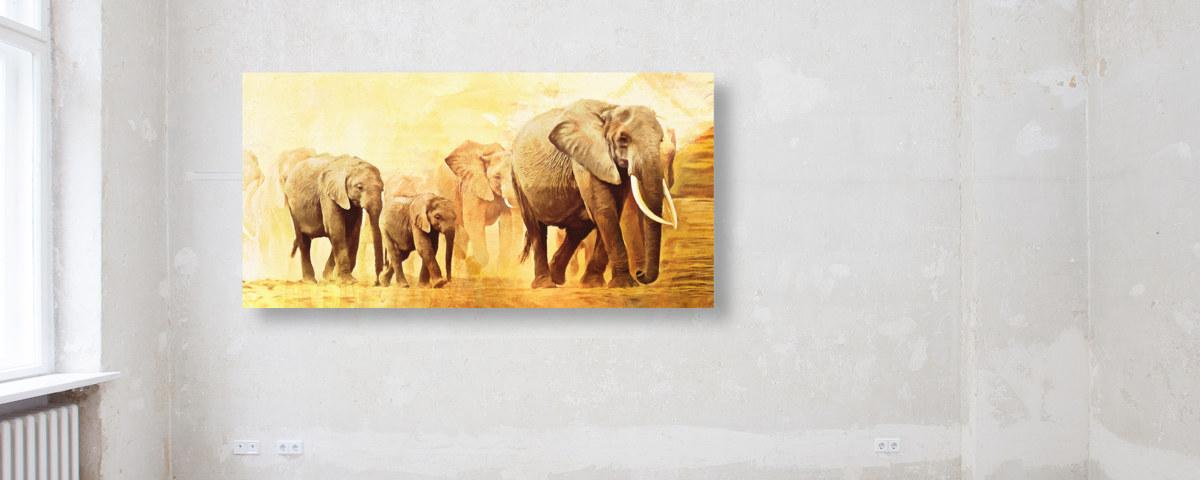 Super Faszinierende Elefanten Bilder für jeden Ihre Wohnräume - myposter LB-59