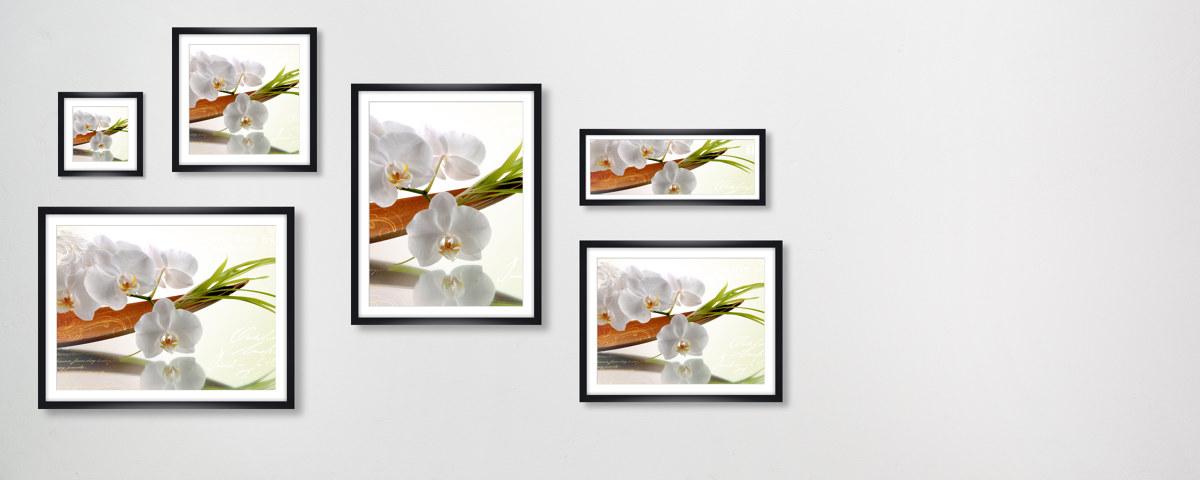 Stilvolles Bild mit Orchideen für Wohn- und Schlafräume