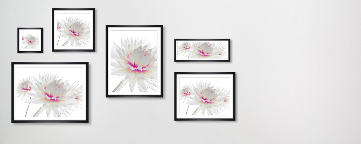 rahmen fr wandbilder bestellen bilderrahmen ideen. Black Bedroom Furniture Sets. Home Design Ideas