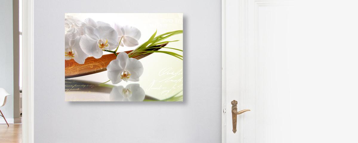 stilvolles bild mit orchideen f r wohn und schlafr ume. Black Bedroom Furniture Sets. Home Design Ideas