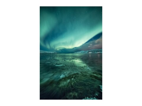 Arctic Artwork