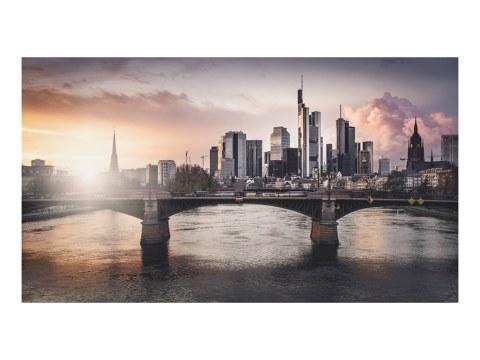 Frankfurt Main Study 2