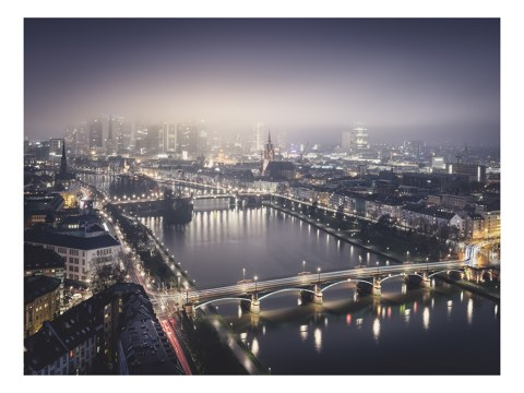 Frankfurt Main Study