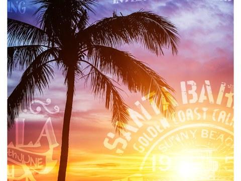 Photo de palmier sur fond de coucher de soleil
