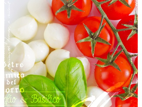 Photo de tomate-mozzarella
