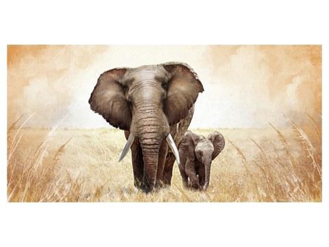 Motif d'éléphants