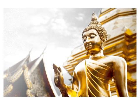 goldener buddha mit erhobener hand energievolle buddha bilder. Black Bedroom Furniture Sets. Home Design Ideas
