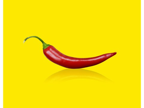 Pop art chilli