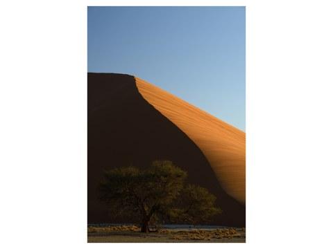 Photo d'une dune