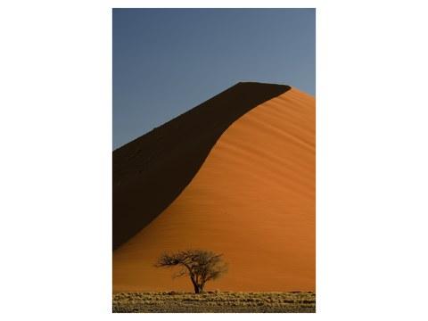 Photo de dunes