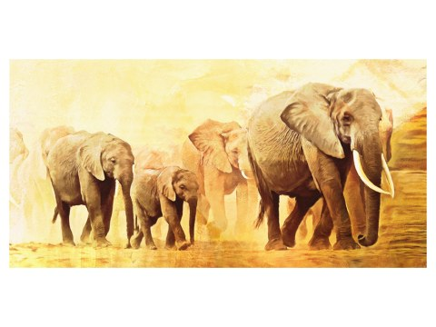 faszinierende elefanten bilder f r jeden ihre wohnr ume. Black Bedroom Furniture Sets. Home Design Ideas