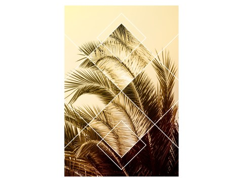 Geometric Palm Leaves
