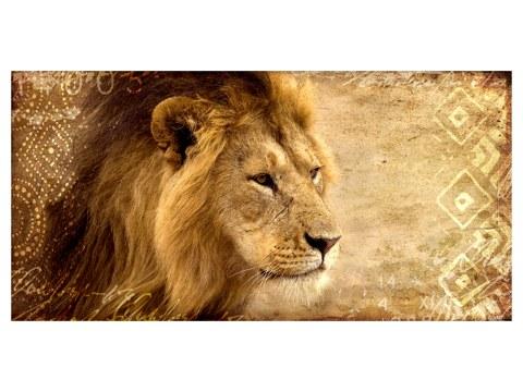 Photos de lions