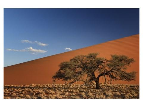 Namibia Düne Foto