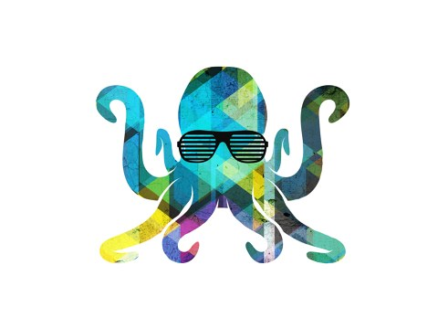Oktopus Bild