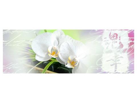 Motief orchidee