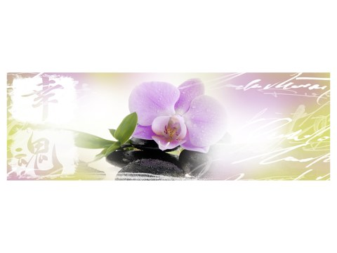 Orchidee Panorama