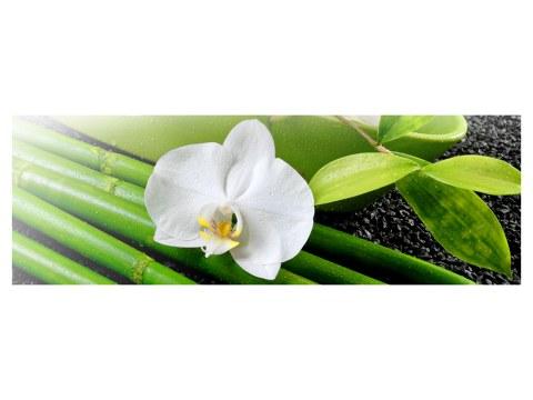 Poster d'orchidée