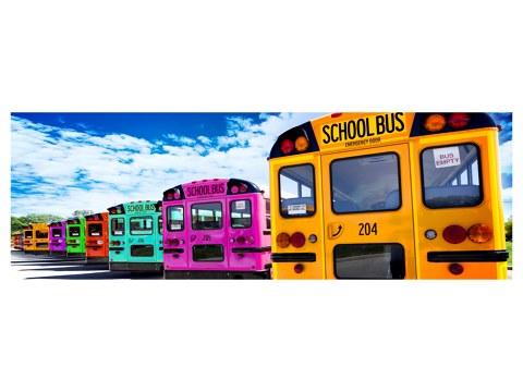 Schulbus Bild