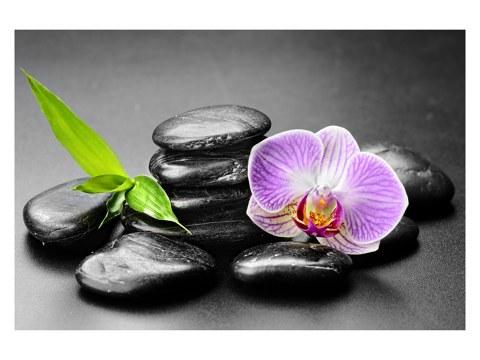 Steine Orchidee