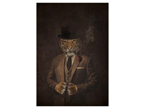 Image de tigre