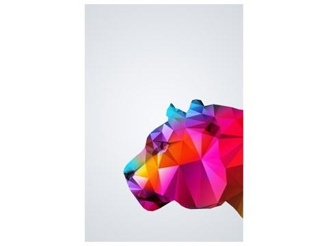 Tigre design