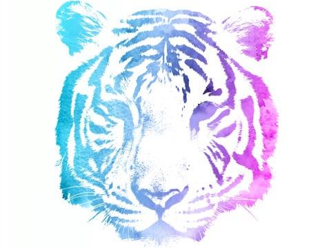 Tiger Motiv