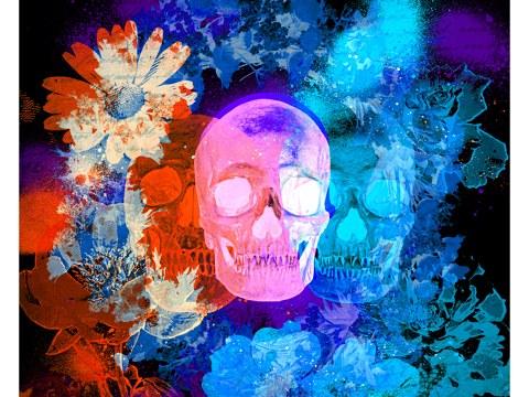 Totenschädel Bild